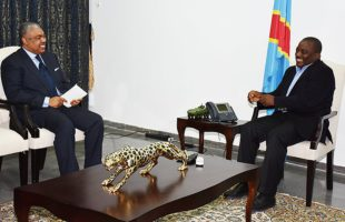 RDC : Ce Gouvernement éléphantesque risque d'être budgétivore !