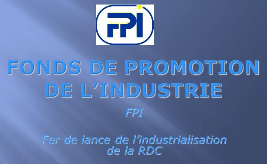RDC : Le FPI recrute un Consultant chargé d'audit des systèmes d'information