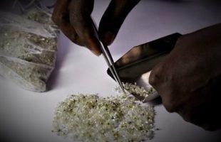 RDC : Provinces, la Tshopo doit 10 000$ à l'Ituri sur le pourcentage de ses diamants vendus
