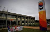 Brésil : BRF autorisé à reprendre l'exportation de sa viande de volaille