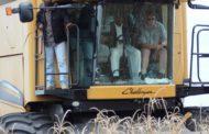 RDC : 200.000 tonnes de maïs, prémices de Bukanga Lonzo [Dossier]