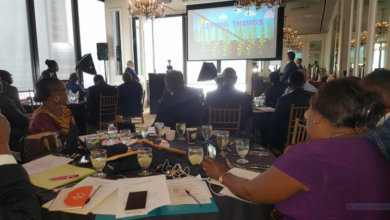 AFRIQUE-USA : Le Business au centre du Forum Économique Africain à Dallas ! 2