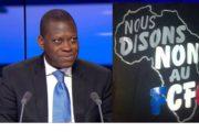 Les vrais mobiles du limogeage du Directeur de la Francophonie économique, Kako Nubukpo!