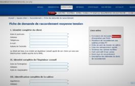 RDC : Accès à l'électricité MT, la demande en ligne désormais possible à la SNEL !