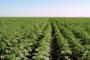 RDC: les quatre priorités des investissements durables!