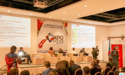 RDC, l'Anapiaccompagne des investissements productifs dans le Corridor Ouest 19