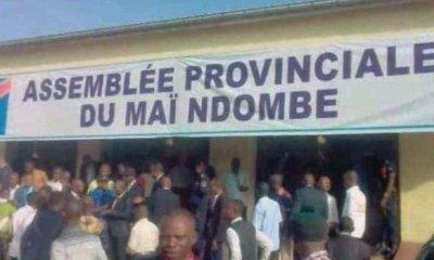 RDC : François Kaniki dénonce un candidat-sénateur «corrupteur» à Mai-Ndombe ! 35