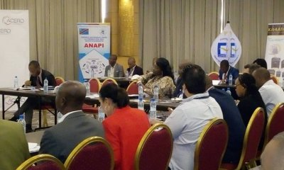 RDC : ACERD table sur les opportunités d'investissement dans les énergies renouvelables 19