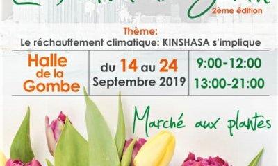 Kinshasa : l'Institut français abritera la 2ème édition du Festival du Jardin du 14 au 24 septembre 2019 44