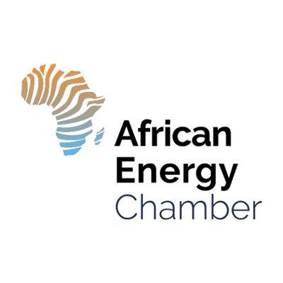 Afrique : appel à candidatures pour le programme d'appui aux jeunes professionnels de l'énergie 2020 1