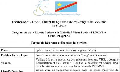 RDC : le Fonds social de la République lance le recrutement d'un Spécialiste en violences basées sur le genre 22