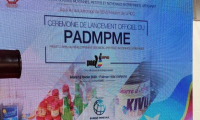 RDC : PADM-PME recrute un Consultant pour des tâches à exécuter à Matadi et Lubumbashi 18
