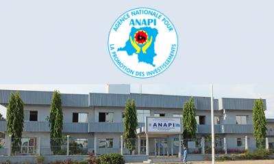 RDC : Anapi suspend tout dépôt de dossiers liés aux agréments ! 5