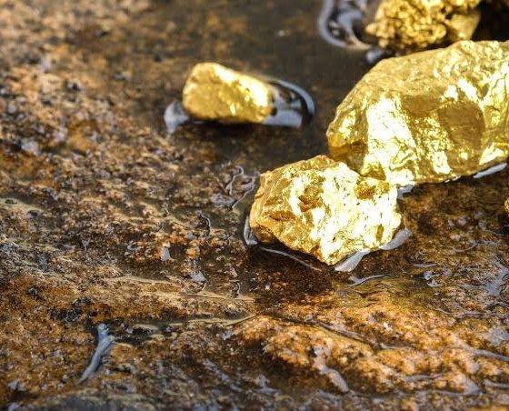 Monde : la demande et l'offre d'or en baisse de 6% au premier semestre 2020 (rapport) 68