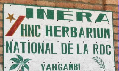 RDC : l'Institut international d'agriculture tropicale dote l'INERA des matériels de laboratoires agricoles 9