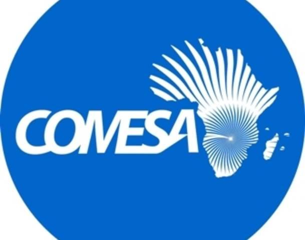 RDC : Trois institutions du COMESA s'engagent à booster les entreprises congolaises 83