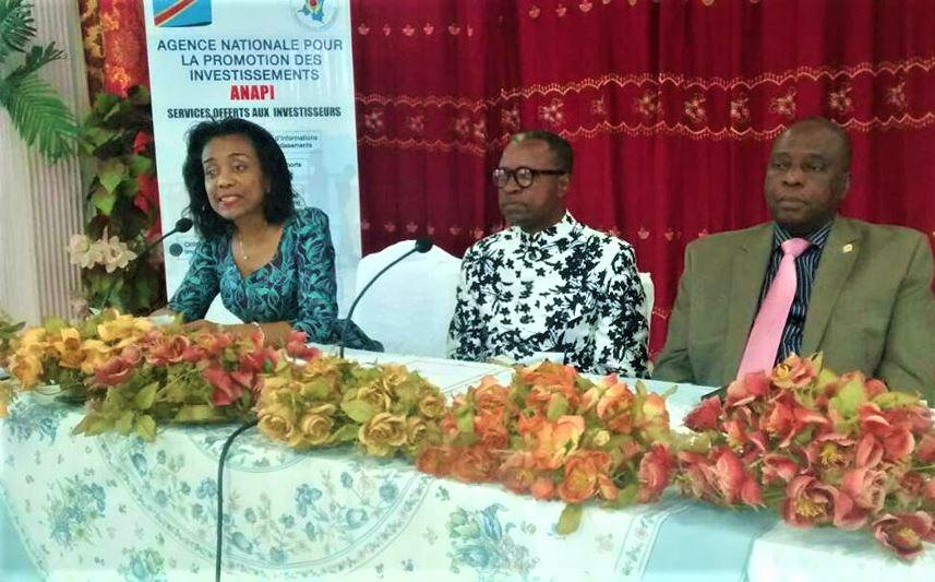 Kongo Central : ANAPI, un bureau de liaison bientôt opérationnel à Matadi ! 1