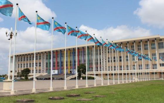 RDC : le Conseil économique et social dévoile l'ordre du jour de sa session ordinaire ! 1