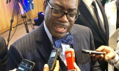 RDC: projet grand Inga, Adesina réaffirme à Yav l'accompagnement de la BAD ! 21