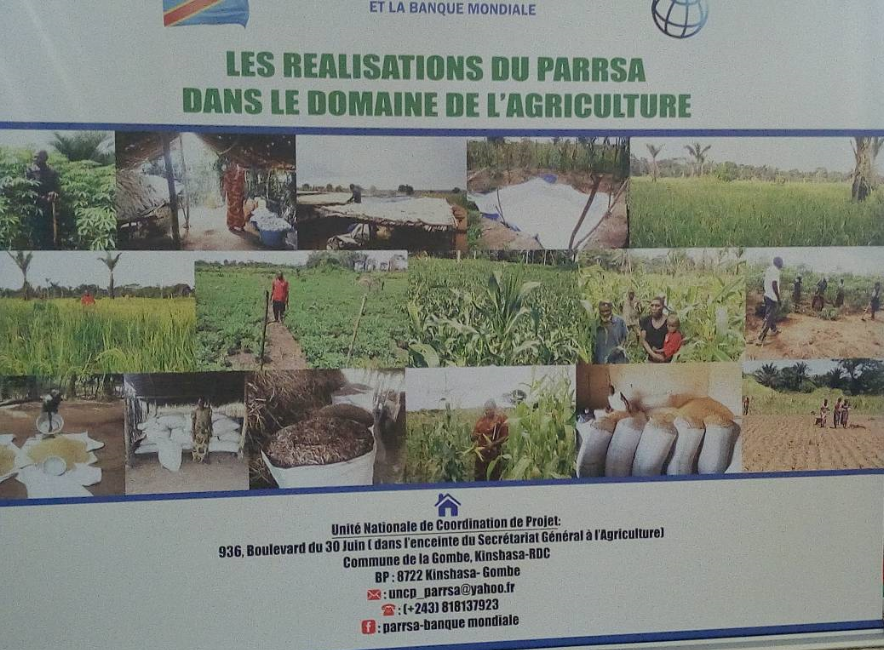 RDC : 75 millions USD additionnels pour appuyer la relance du secteur agricole! 1