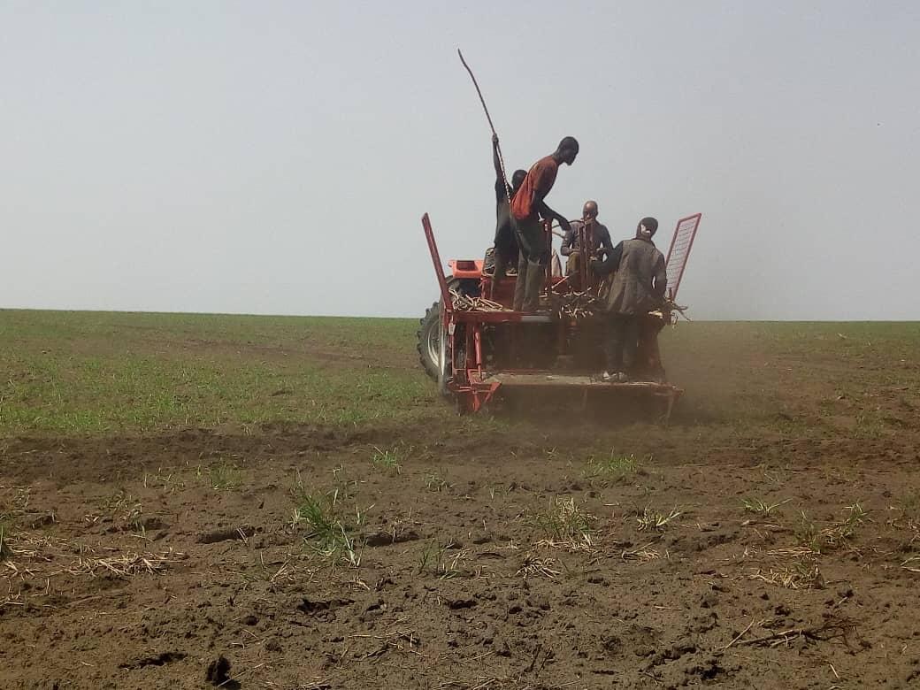 Bukangalonzo tracteur @Zoom_eco