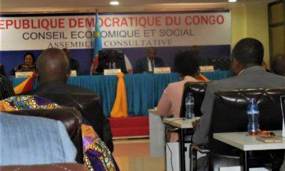RDC : Conseil économique et social, le rapport de la session d'avril 10