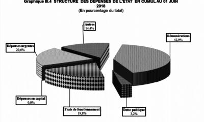 RDC: exécution du budget, 34% en recettes et 29% en dépenses au 1er juin 2018! 15