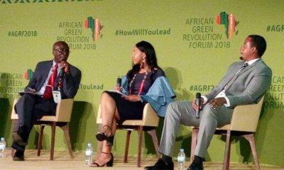 AGRF 2018 : l'agriculture, un grand atout pour booster l'économie africaine! 22