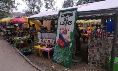 RDC: l'ANAPI œuvre pour la promotion des PME dans l'agro-industrie! 14