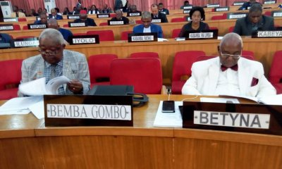 RDC : loi sur la reddition des comptes 2017 adoptée au Sénat 4