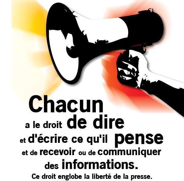 Monde: plaidoyer pour la création d'un bureau de l'ONU sur la liberté d'expression 1