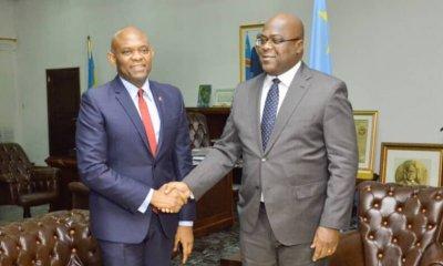 RDC : les trois messages de Tony Elumelu à Felix Tshisekedi ! 15