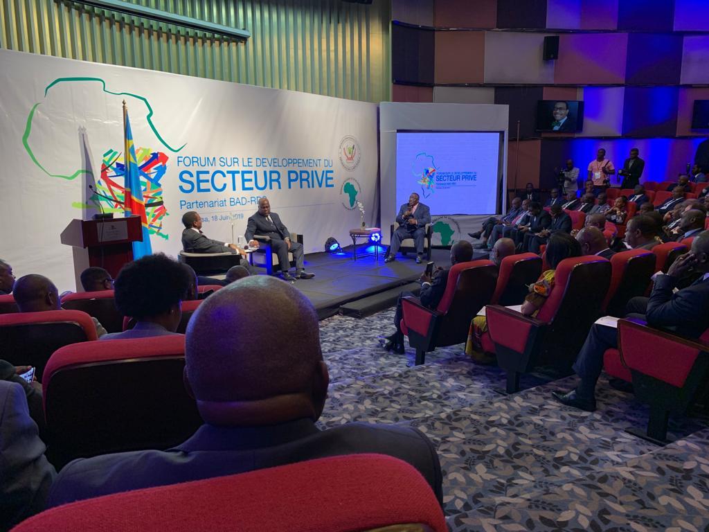 RDC : Tshisekedi - Adesina, la vision commune pour le développement 1