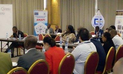 RDC : ACERD table sur les opportunités d'investissement dans les énergies renouvelables 88