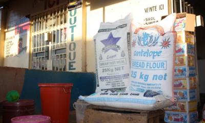 Haut-Katanga : la crise de maïs appelle à une politique agricole résiliente 8