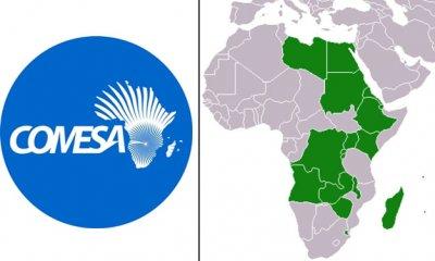 RDC : Comesa, le projet d'appui à la DGDA, l'OCC et à l'OPEC exécuté à 90% 7