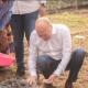 RDC : Rawbank active dans le projet « 1 milliard d'arbres pour le climat 2023» 14