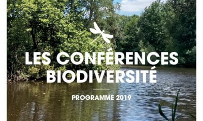 RDC : des experts en atelier de restitution sur le cadre mondial de la biodiversité pour l'après 2020.