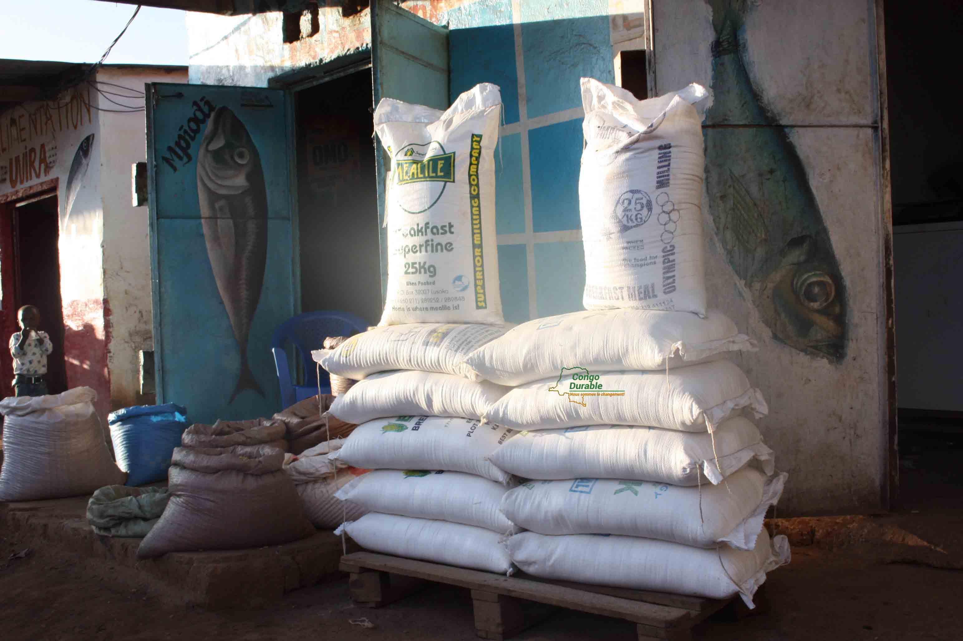 Face à la spéculation non expliquée dans la province du Haut-Katanga notamment dans la fixation de prix du sac de farine de maïs de 25 kg, la ministre de l'Economie, Acacia Bandubola a donné des orientations claires au Gouverneur de province, afin que celui-ci fasse exécuter la loi en matière de fixation des prix.