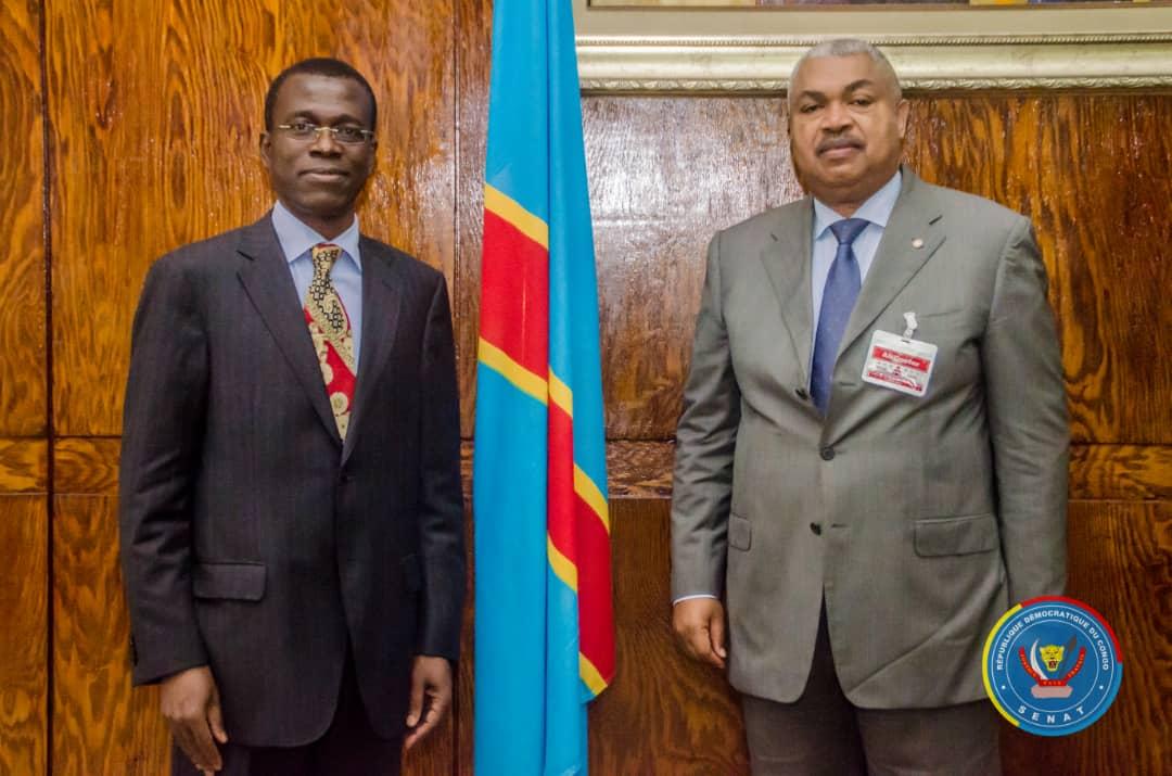 RDC : le premier vice-président du Sénat et une délégation de la BAD ont échangé sur les questions de développement (Communiqué)