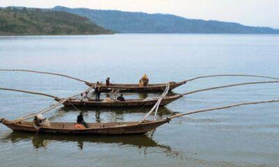 RDC : Ministère de la pêche et élevage, le plan stratégique 2020-2022 adopté au Conseil des ministres !