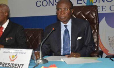 RDC: le Conseil Economique et social alerte sur les six facteurs susceptibles d'impacter l'économie déjà fortement fragilisé! 9