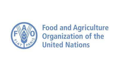 RDC: la FAO a besoin de 155 millions USD pour faire face à l'insécurité alimentaire aiguë sévère! 104