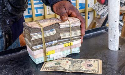 RDC : adjudication des bons du Trésor, le Gouvernement compte lever 7,5 millions USD ce 20 octobre 2020 31