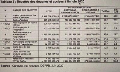 RDC : les assignations budgétaires de recettes des douanes et accises réalisées à 38% à fin juin 2020 3