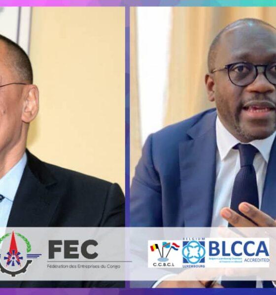 RDC: la FEC présente à la CCBL les mesures d'accompagnement des sociétés pendant le confinement 6
