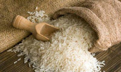 Afrique: le riz, deuxième céréale la plus consommée en Afrique subsaharienne après le maïs 15