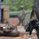 RDC : le BCNUDH a enregistré plus de 2 945 cas de civils tués en 2020! 12