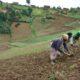 RDC : malgré le sit-in, pas de compromis entre la MAE et le ministre de l'Agriculture 49
