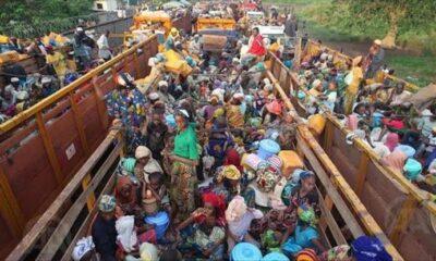 RDC : plus de 42 000 nouveaux réfugiés centrafricains enregistrés depuis début janvier 2021 99